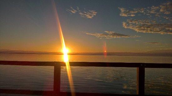 Hamelin Pool, Australie : photo2.jpg