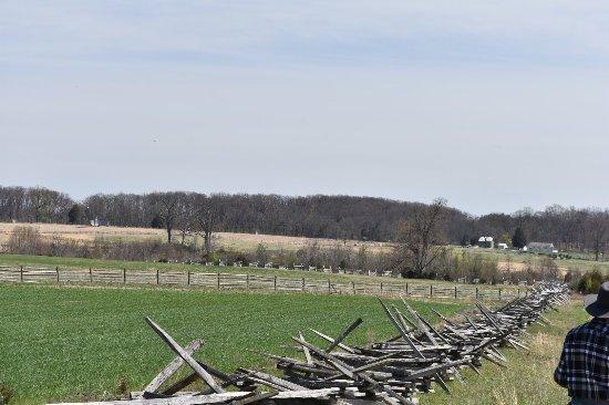 Hickory Hollow Horse Farm : photo3.jpg