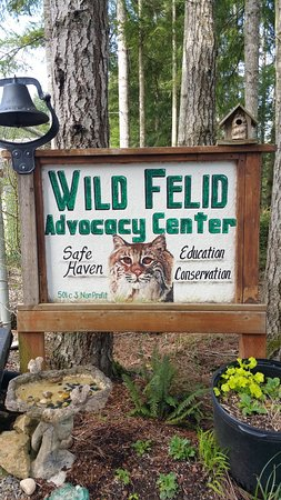 ‪Wild Felid Advocacy Center of Washington‬