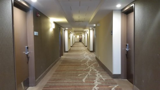 Holiday Inn Express Hotel Suites Calgary Nw Banff Trail Nice Bright And Wide