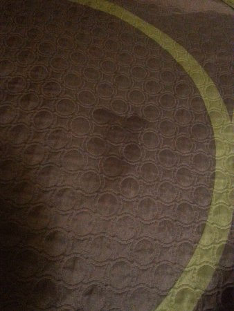 Super 8 Athens : Stain on bed