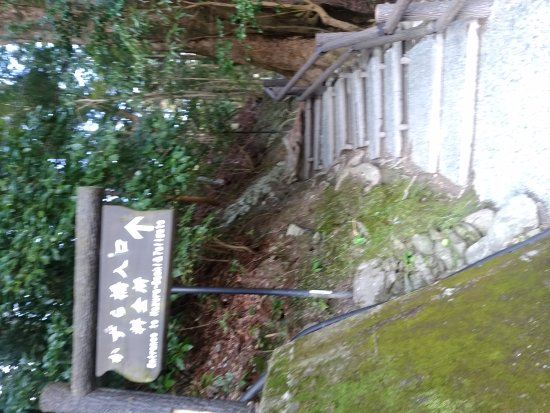 Iya Kazura Bridge : DSC_0569_large.jpg