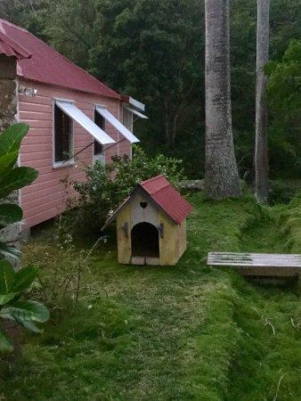The Hermitage Plantation Inn: photo4.jpg