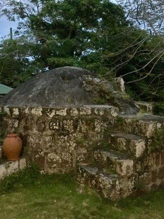 The Hermitage Plantation Inn: photo6.jpg