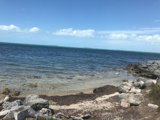 Navy Lodge Key West Photo