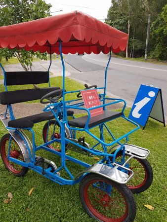 our funny bike picture of coral beach lodge port douglas