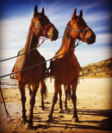 Port Willunga, Australien: Dontai and Harry