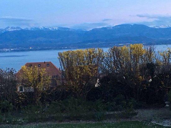 Mont-sur-Rolle, Suiza: Dégustation un jeudi soir