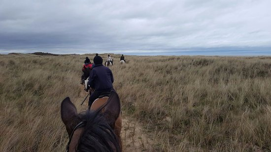 Glenealy, Irland: What a great way to discover Ireland, on horseback :)