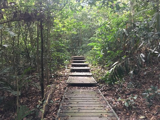 Pahang, Malasia: Taman Negara National Park