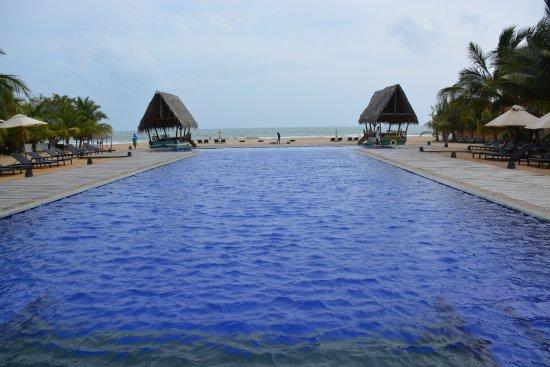 Pool Picture Of Maalu Maalu Resort Spa Kalkudah Tripadvisor