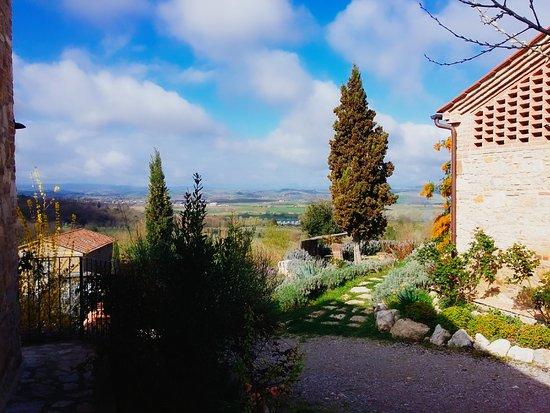 Serre di Rapolano, Italien: 2017-03-26-10-26-29-283_large.jpg