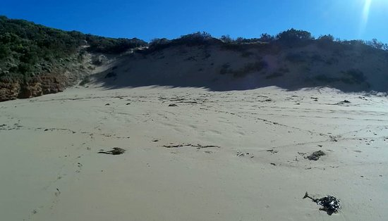 The Cove, Australië: SANDY BEACH.
