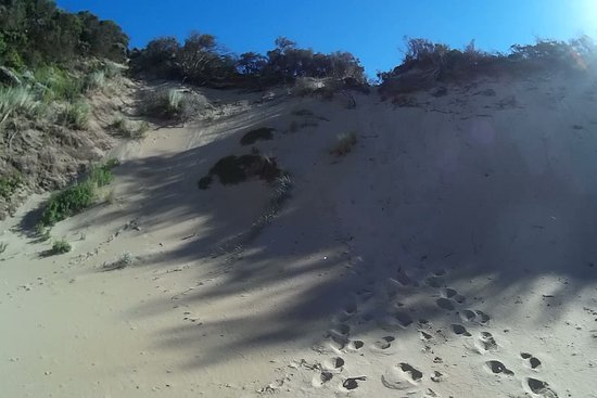 The Cove, Australië: BIG DUNE TO CLIMB.