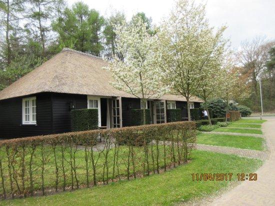 Holten, Países Bajos: Soort Lodge voor de overnachting