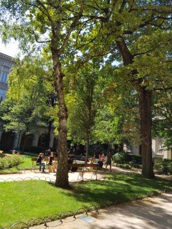 Musée des Beaux-Arts de Lyon : Un moment de paix à l'ombre des arbres du Palais Saint-Pierre