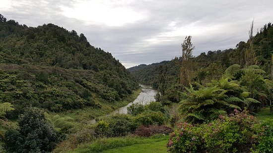 Owhango, New Zealand: Breakfast view