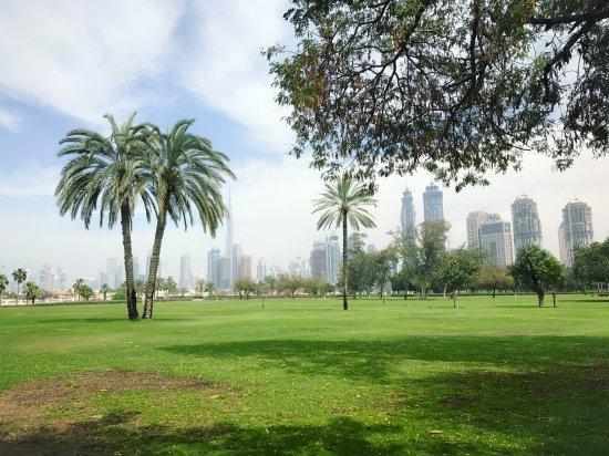 Park Safa