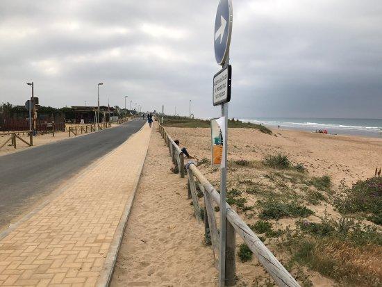photo0.jpg - Picture of Playa El Palmar, Vejer de la Frontera - TripAdvisor