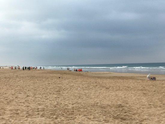 photo2.jpg - Picture of Playa El Palmar, Vejer de la Frontera - TripAdvisor