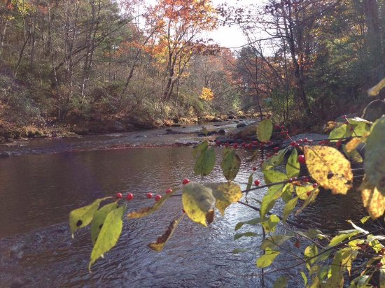 Chaplin, CT: Natchaug River from our site