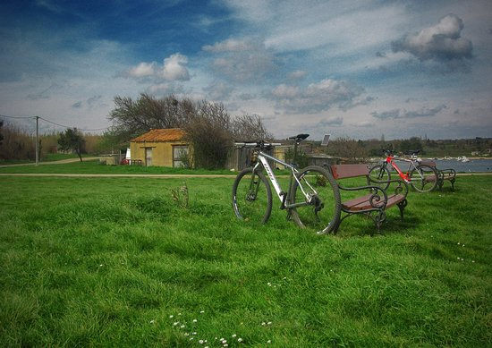 Liznjan, Kroasia: A view on nature & one of our bikes (we assemble them 100%)