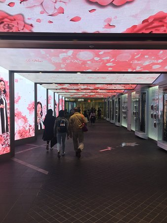Lotte Duty Free Main Store : photo0.jpg