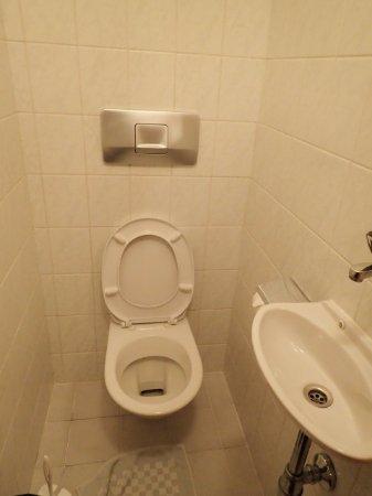 Pension Dr. Geissler: 共同トイレ