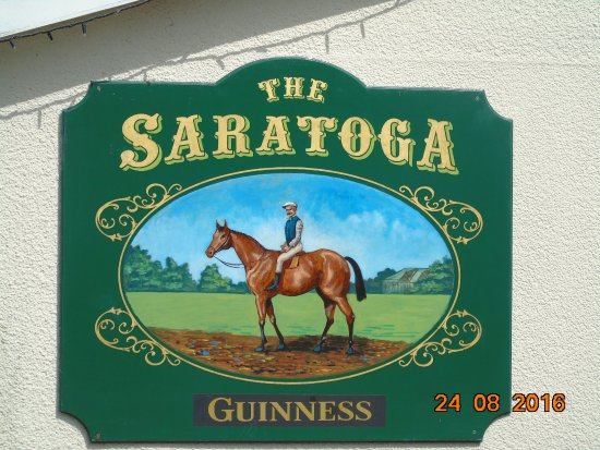 Woodstown, Ireland: Pub Sign