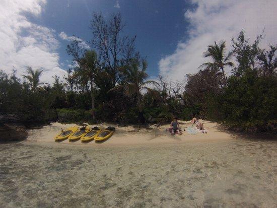 Sandys Parish, Bermuda: Take the paddle boards to Palm Island!