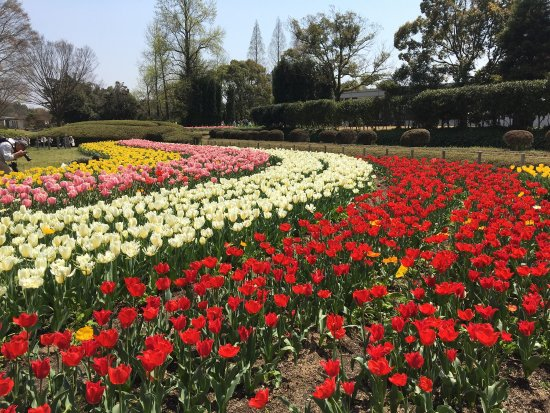 Hyogo Prefectural Flower Center