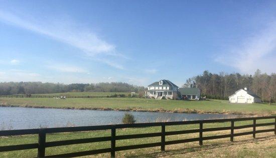 Culpeper, VA: photo3.jpg