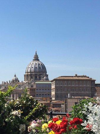 Vista Del Cupolone E Piantumazione Della Terrazza Panoramica