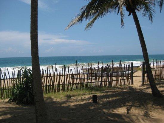 AquaBeach Cabins: Strand und Liegebereich