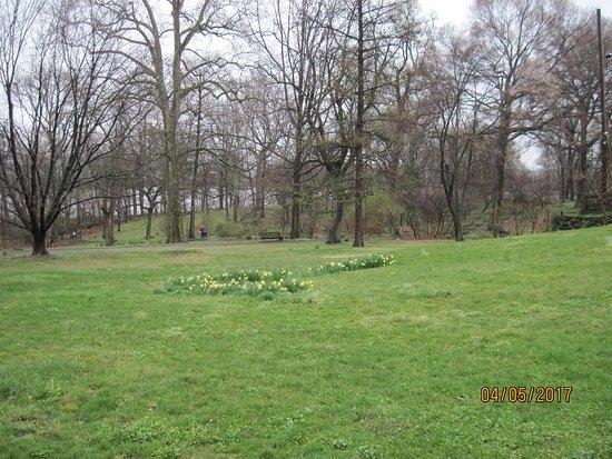 Bartram 39 S Garden Philadelphia Pa Anmeldelser
