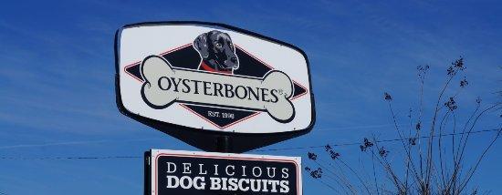 Oysterbones: Oyster Bones Pet Shoppe