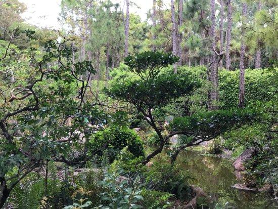 Morikami Museum U0026 Japanese Gardens: Part Of The Do Bashi Garden Area