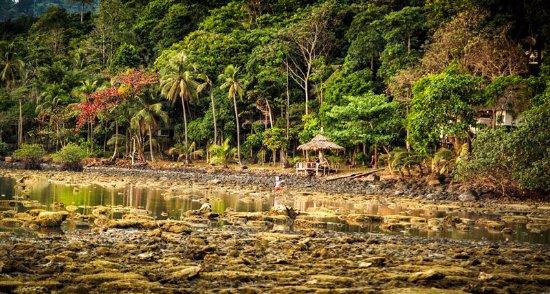 Bailan Beach Resort: Plage à marée basse