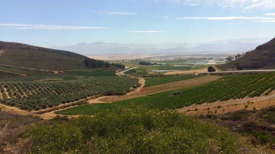 Riebeek Kasteel, South Africa: The area around Riebeek Ksteel