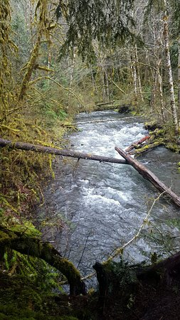 Port Angeles, WA: The river leading up to the falls.