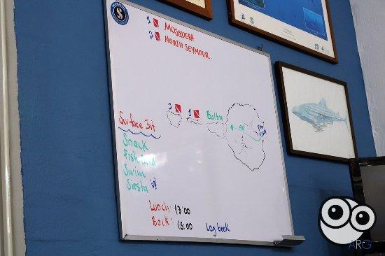 Scuba Iguana : Plan de la excursion