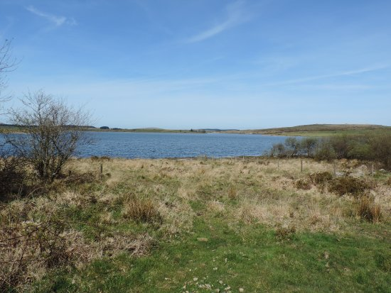 St. Neot, UK: Colliford Lake from the bottom end