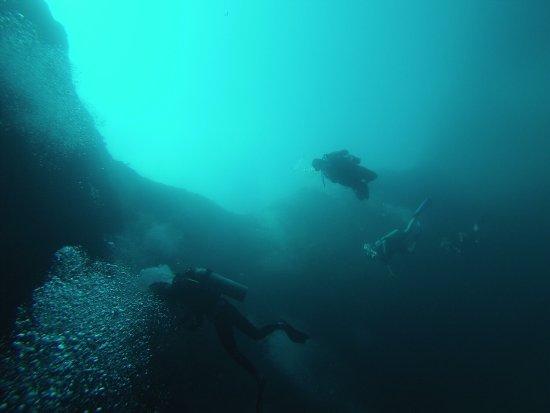 Bahama Divers: photo3.jpg