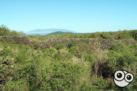 Puerto Villamil, Ekwador: El muro en su extension