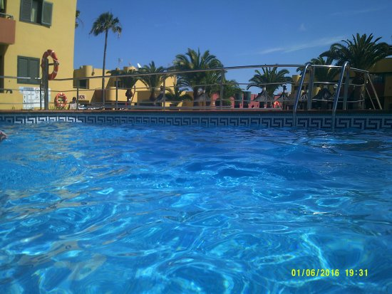 Top pool photo de atlantic garden beach mate corralejo for Best pool buys canada