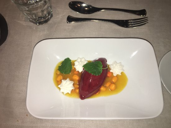 Mikkeli, Finland: Sorbet for dessert at Vilee Puoti & Bistro