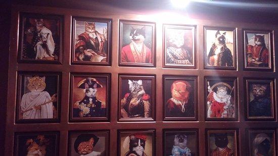 Cats Story Cafe Limassol