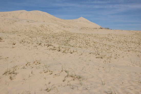 Essex, CA: Kelso Dunes - More sand