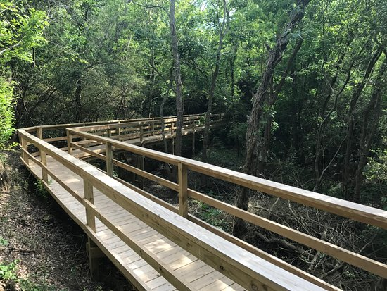 High Island, TX: Boardwalk access to rookery