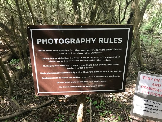High Island, TX: Photography rules